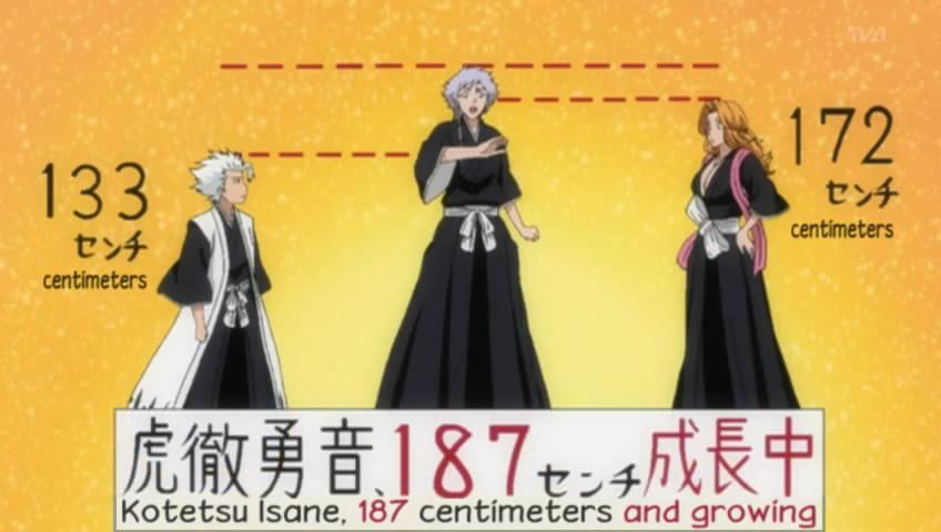 Toushiro Hitsugaya O Bleach Absolute Anime